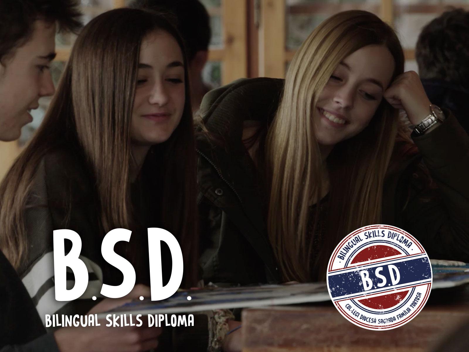 Bilingual Skills Diploma